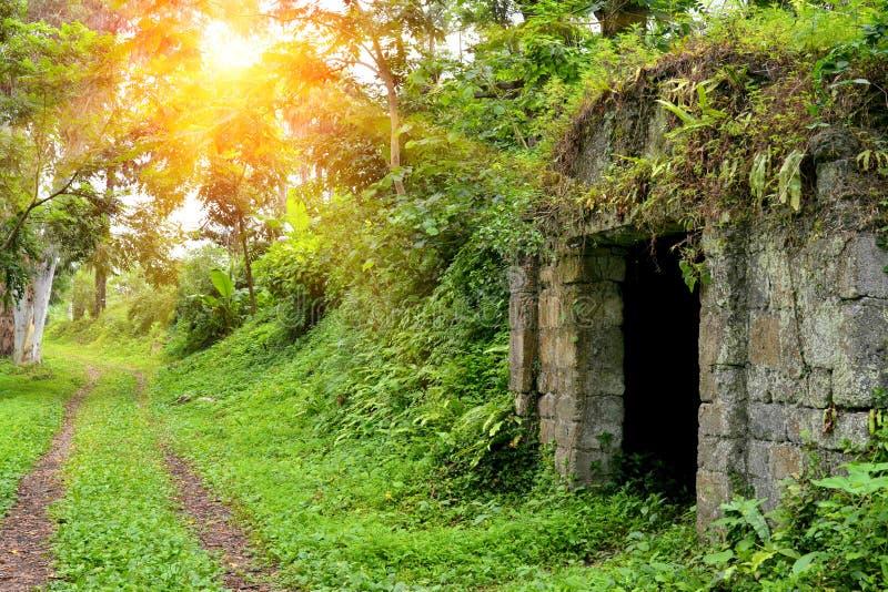 Cripta de piedra en el jardín botánico Georgia Batumi imágenes de archivo libres de regalías
