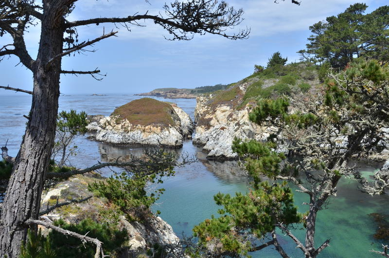 Crique au point Lobos photographie stock libre de droits