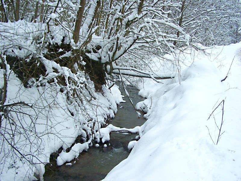 Crique d'hiver photos libres de droits