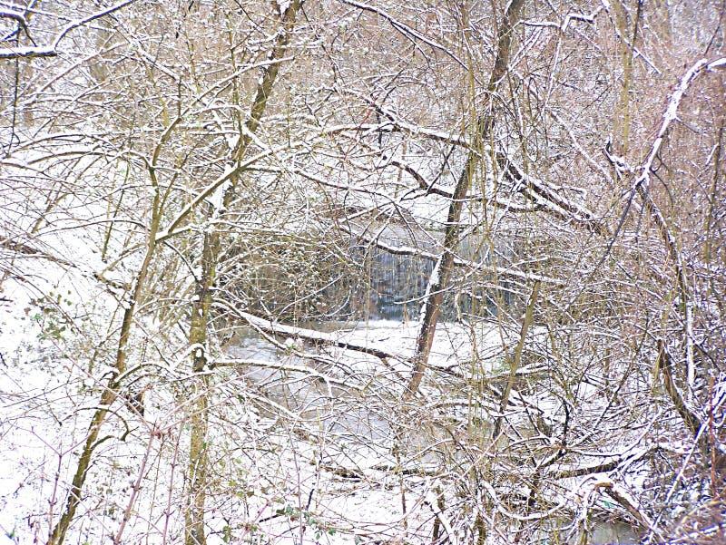 Crique d'hiver photographie stock libre de droits
