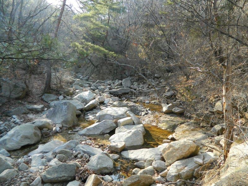 Crique dans les montagnes parmi les roches image stock