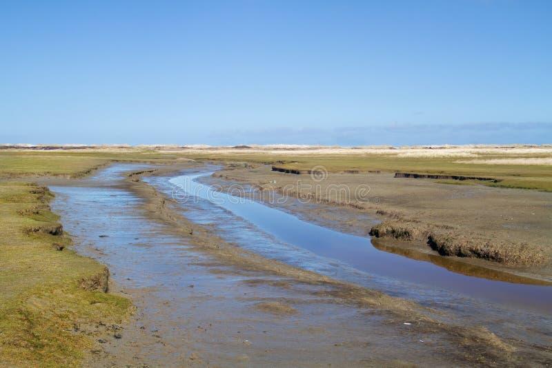 Crique de marée photo libre de droits