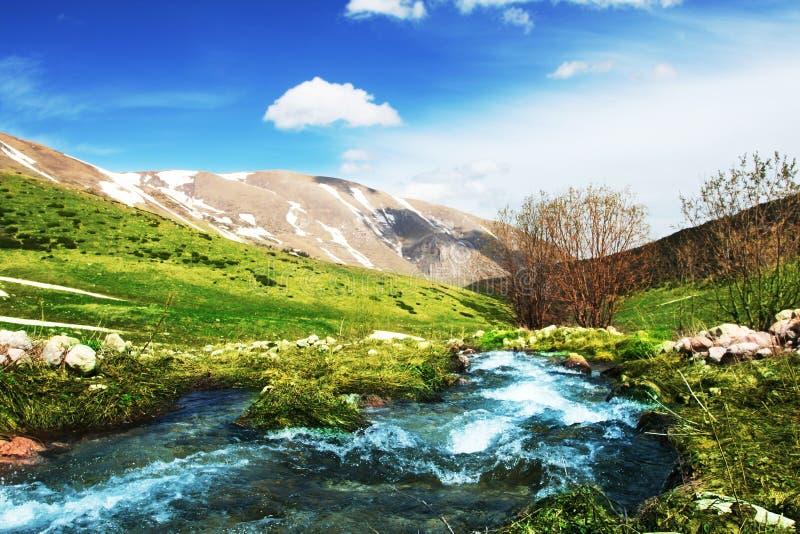 Crique de montagne photographie stock libre de droits