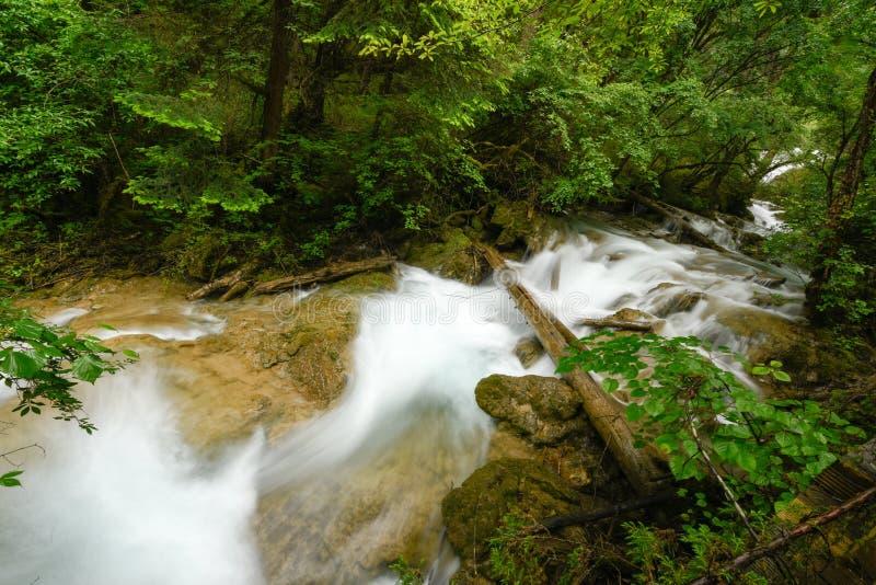 Crique de parc national de vallée de Jiuzhai image stock