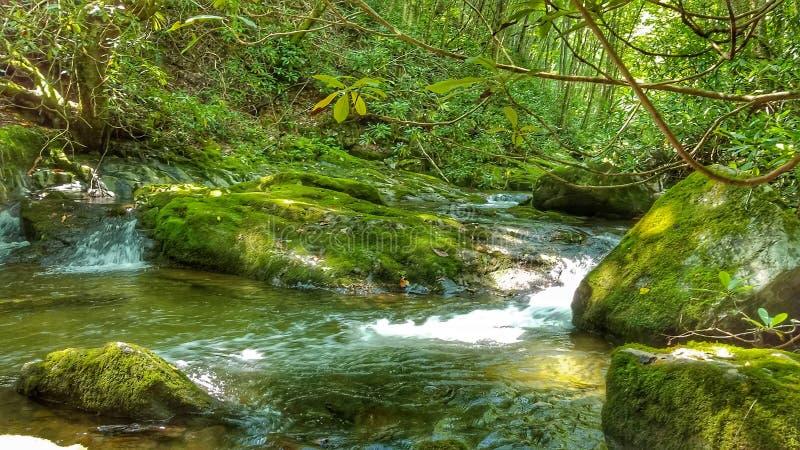 Crique de Rocky Fork photos libres de droits