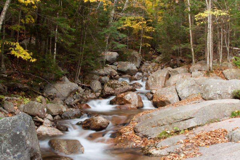 Crique en automne images stock