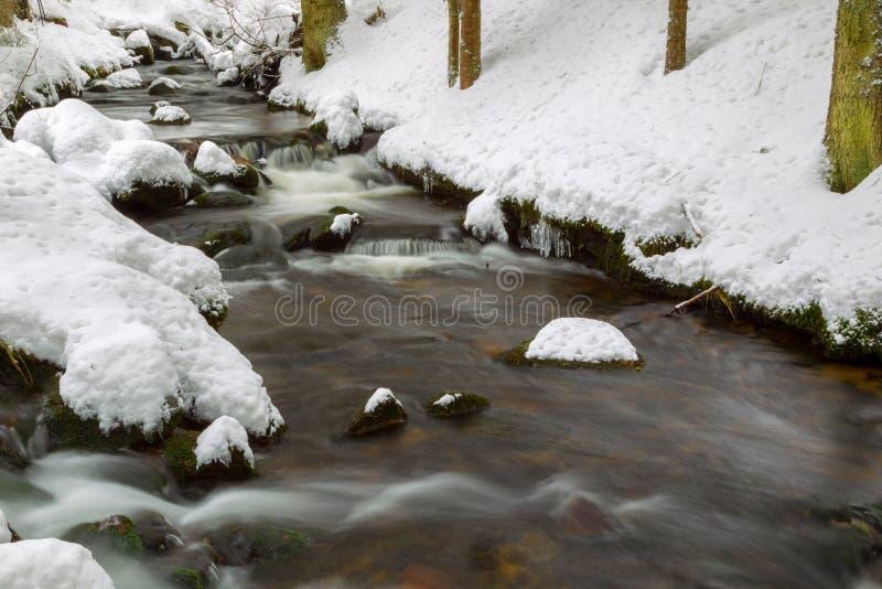 Crique en hiver photographie stock