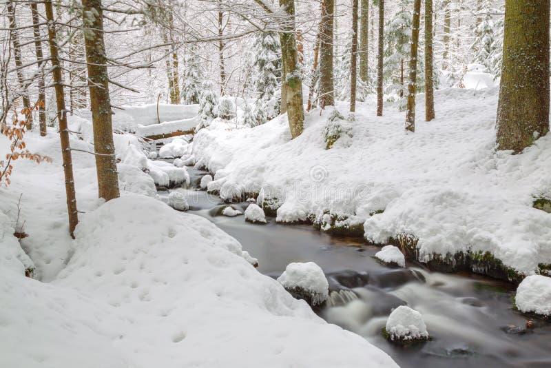 Crique en hiver images libres de droits