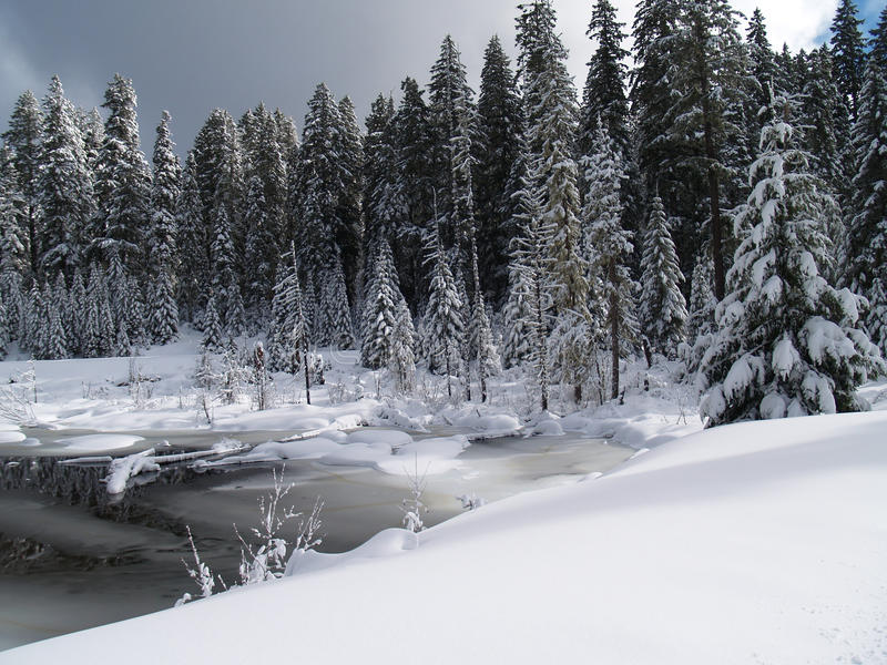 Crique et étang couverts par neige photographie stock