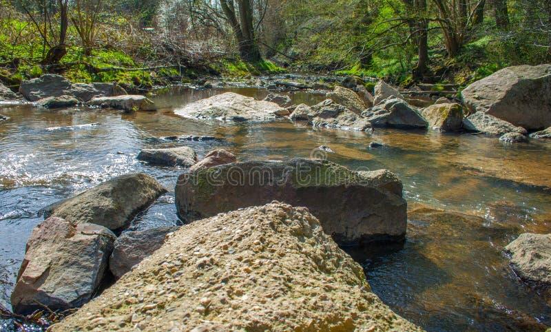 Crique et pierres en nature sauvage images libres de droits