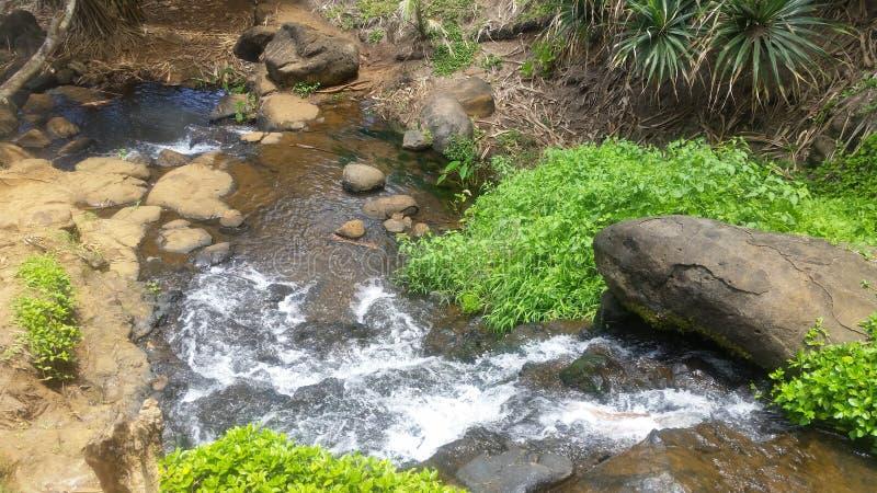 Crique fluide dans l'état d'Hawaii photographie stock