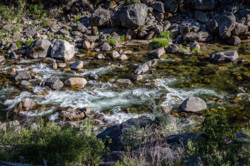 Crique fraîche coulant de gauche à droite avec de l'eau les roches lisses et vert-foncé photographie stock libre de droits