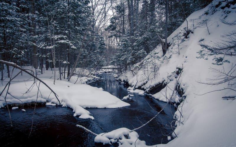 Crique pendant l'hiver images stock