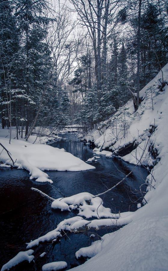 Crique pendant l'hiver image stock