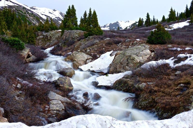 Crique rapide de montagne fonctionnant par les prés alpins image libre de droits