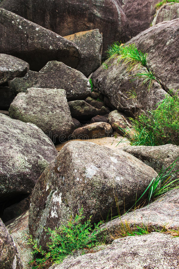 Crique souterraine en parc national de Girraween image libre de droits