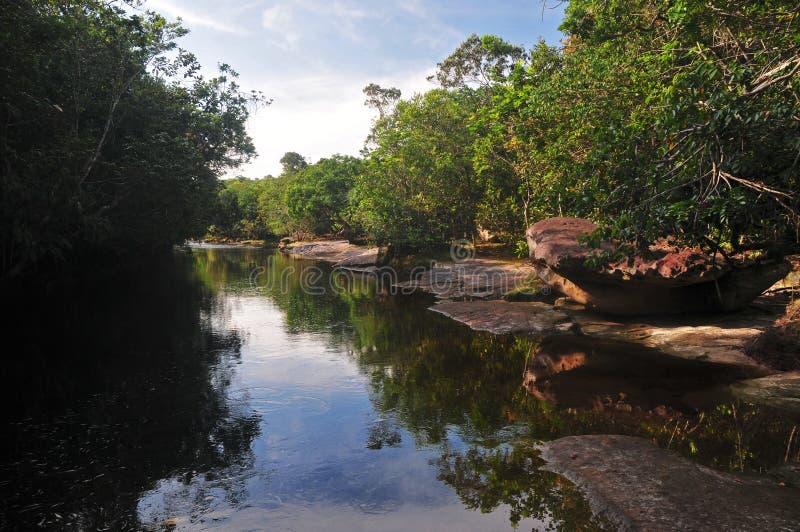 Crique type d'Amazone image stock
