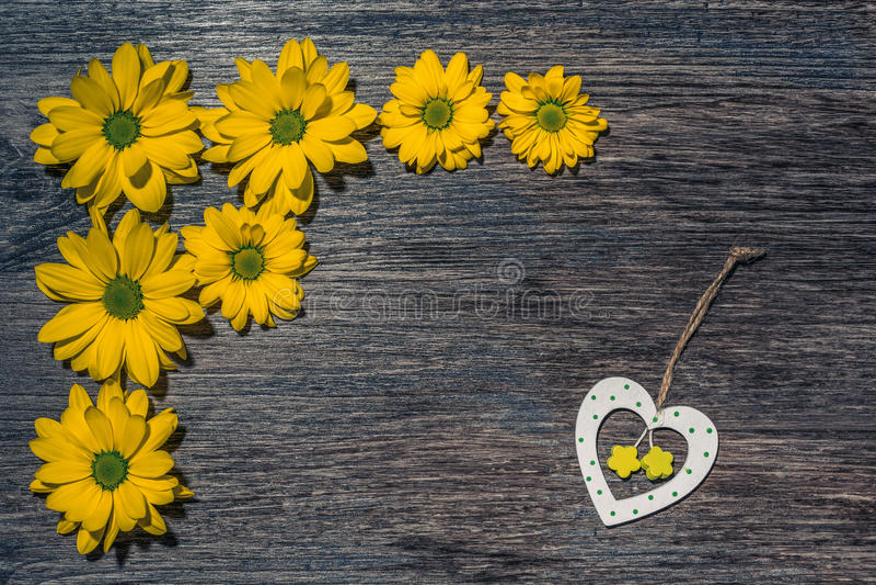 Crisântemos amarelos em uma superfície de madeira escura e em um coração de madeira Vista de acima imagens de stock