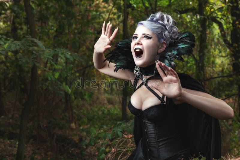 Cris perçants effrayants de sorcière images libres de droits