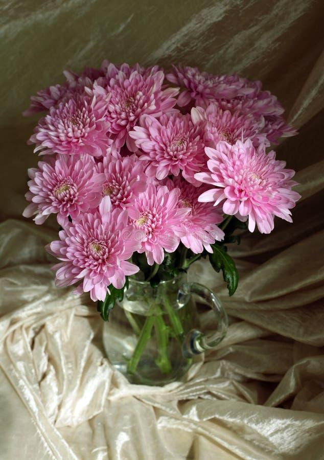 Download Crisantemi fotografia stock. Immagine di tessuto, botanico - 3140334