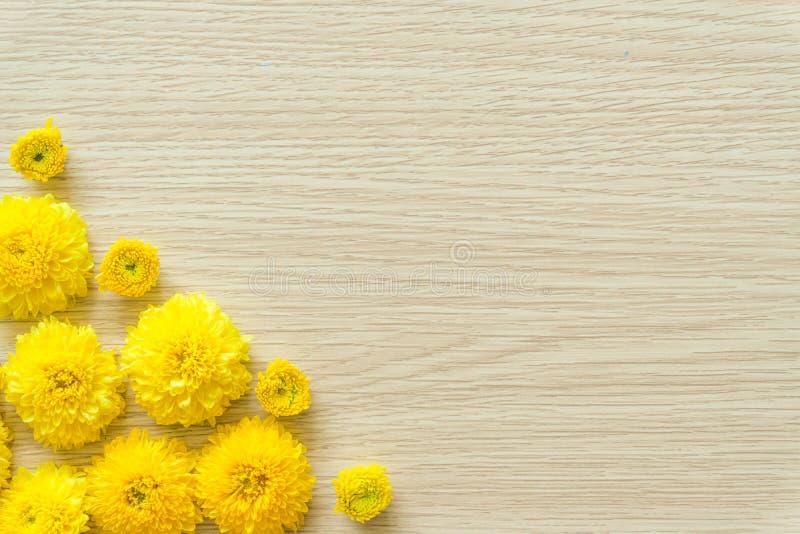 Crisantemo amarillo en un fondo de madera, espacio libre foto de archivo libre de regalías