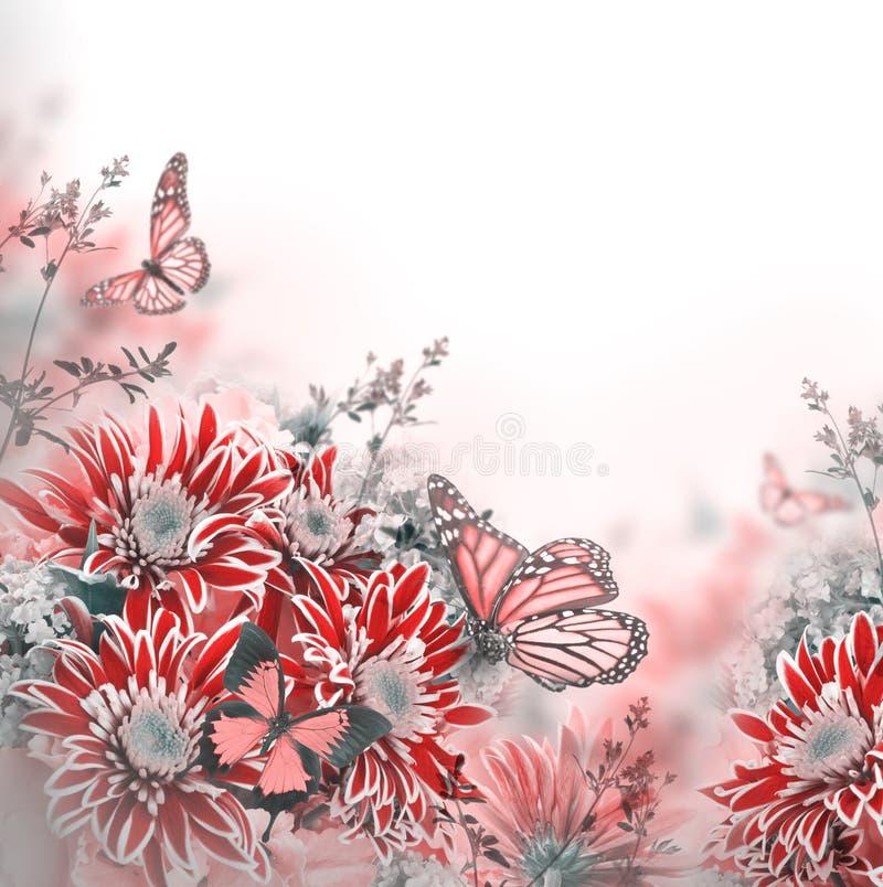 Download Crisantemo Brillante De La Primavera Imagen de archivo - Imagen de resorte, jardín: 42434889