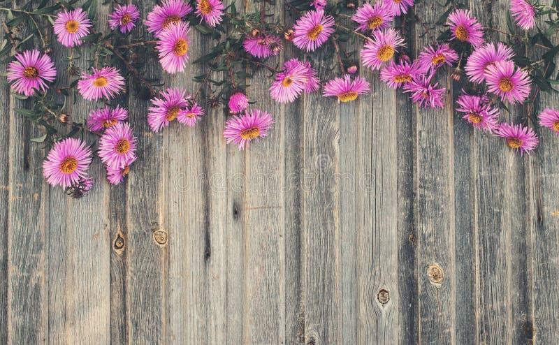 Crisantemo del otoño en fondo de madera rústico F diseñada retra imagenes de archivo