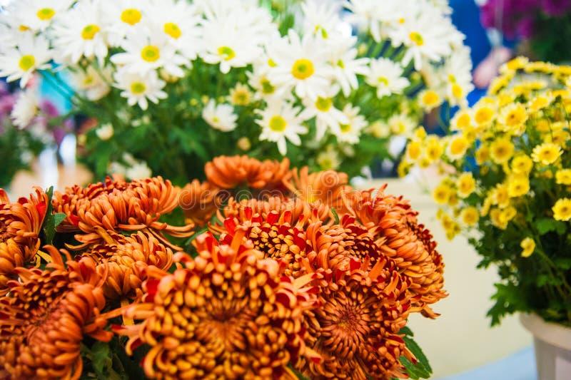 Crisantemo variopinto da vendere fotografie stock
