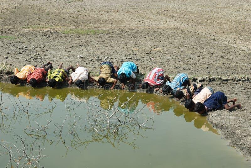 Crise de l'eau en Sundarban-Inde. images libres de droits
