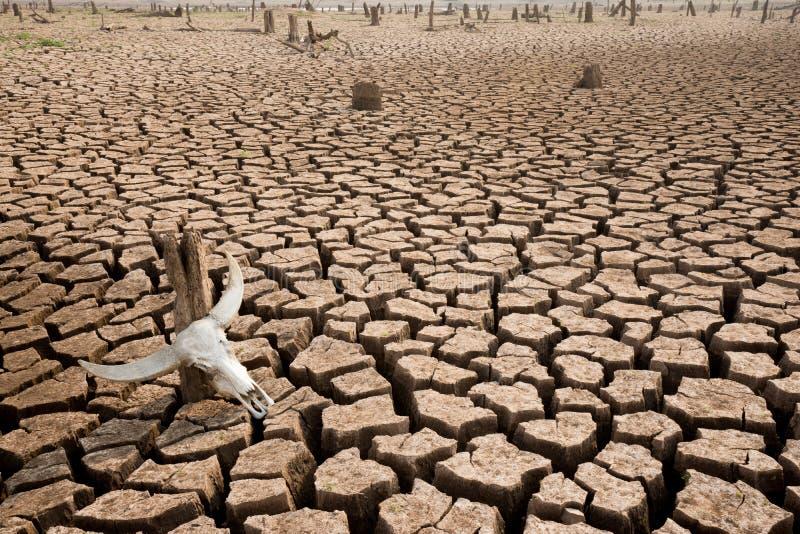 Crise de mundo das alterações climáticas fotos de stock royalty free