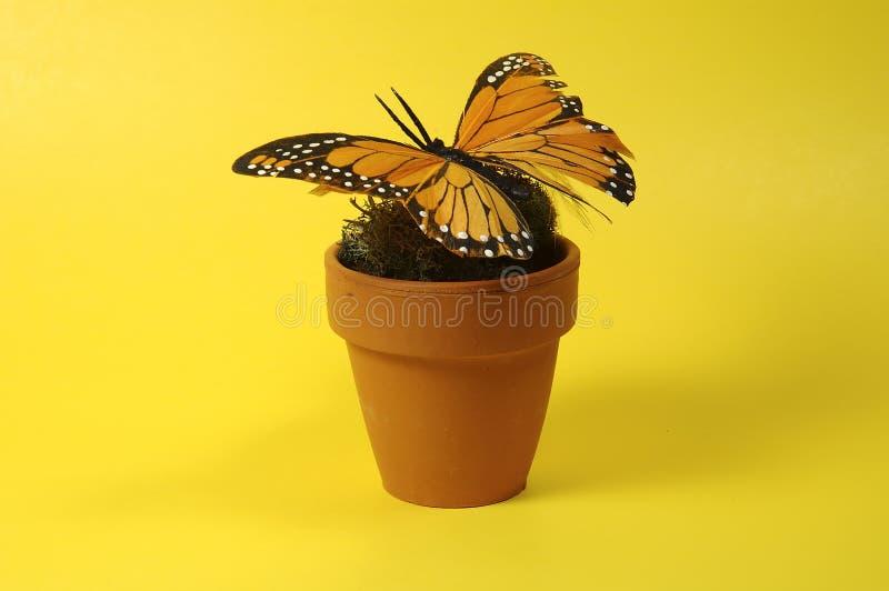 Crisol Con La Mariposa Imagen de archivo
