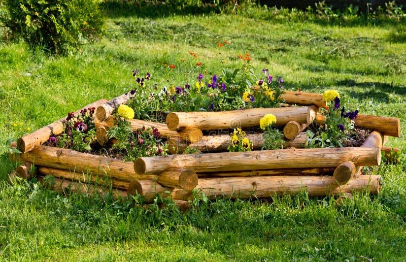 Crisol de flor ornamental foto de archivo