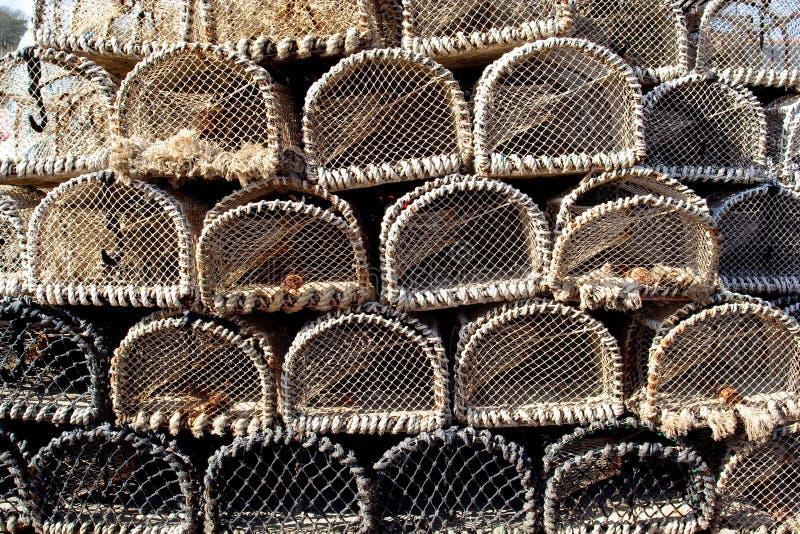 Crisoles de cangrejo foto de archivo