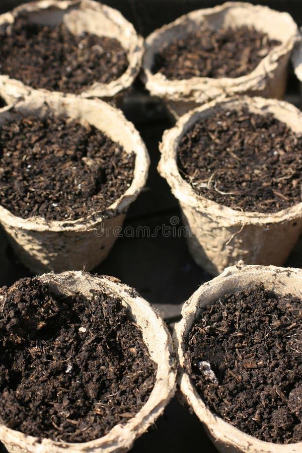 Crisoles reciclados de la planta de semillero imagen de archivo libre de regalías