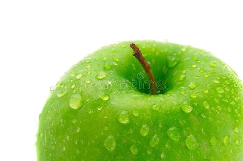 Crisp apple royalty free stock photography