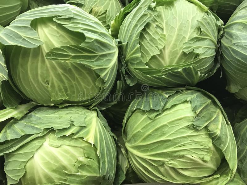 Closeup of healthy green cabbages in a pile royalty free stock photography