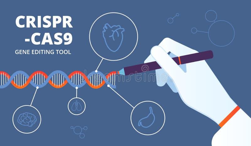 Crispr begrepp Dna Cas9 och gen som iscensätter bioteknik Bakgrund för vektor för ändring för mänsklig genom medicinsk vektor illustrationer