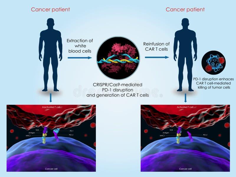 CRISPR-Cas9 system taktować nowotwór ilustracji