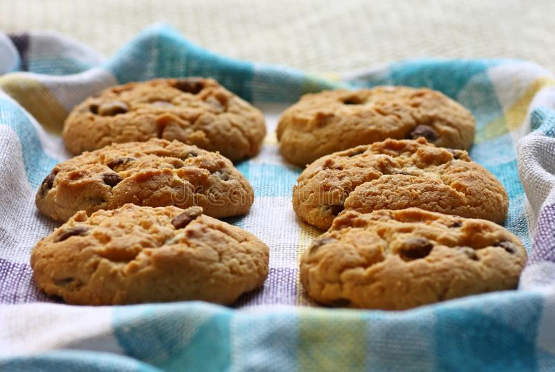Download Crispy cookies stock image. Image of cookies, made, chip - 25234483