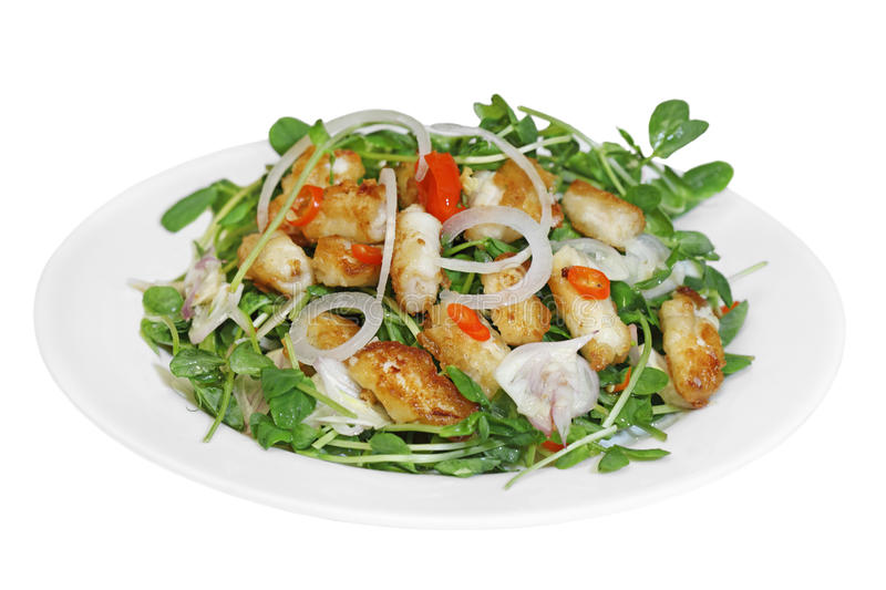 Download Crispy Fried Squid Salad stock photo. Image of green - 22777842