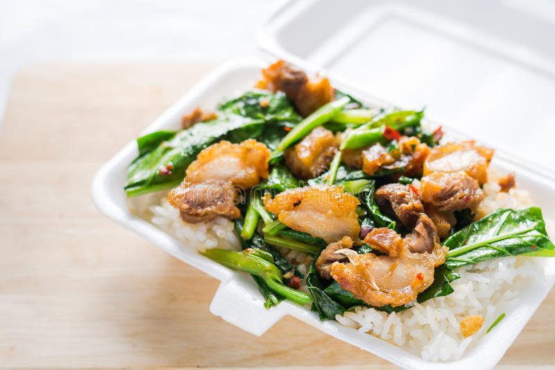 Crispy pork Stir-fried kale with steamed rice in Styrofoam food. Container. Foam Box Cause cancer and have the substance styrene (Styrene) hidden. Thai food stock photos