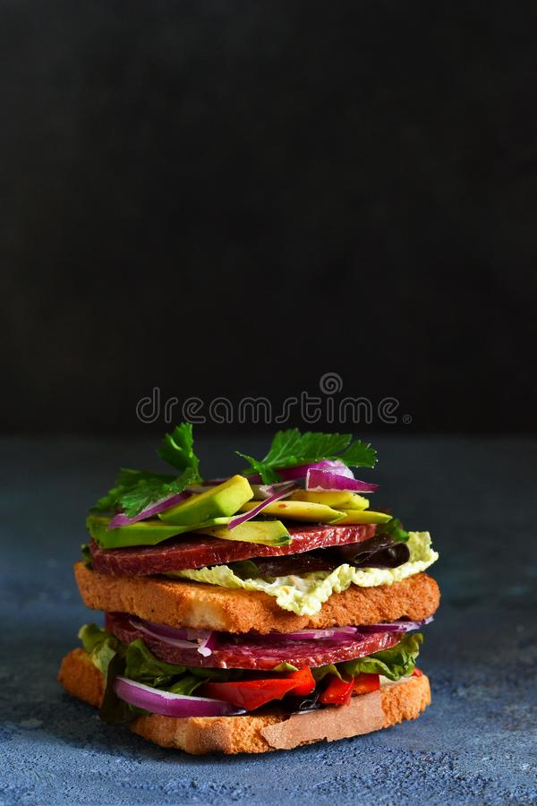 Crispy sandwich with salami, salad and vegetables on the kitchen table. View from above stock image