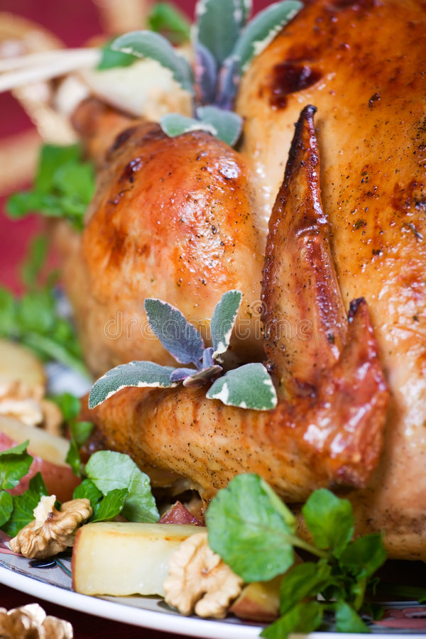 Crispy turkey. Closeup of roasted turkey served with herbs, baked potatos and walnuts on holliday table