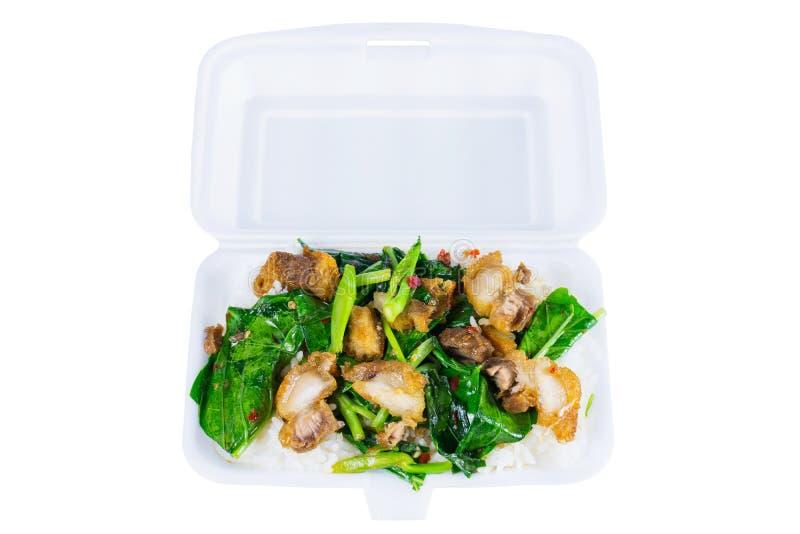 Crispy wieprzowina Smażył kale z odparowanymi ryż w Styrofoam jedzeniu fotografia royalty free