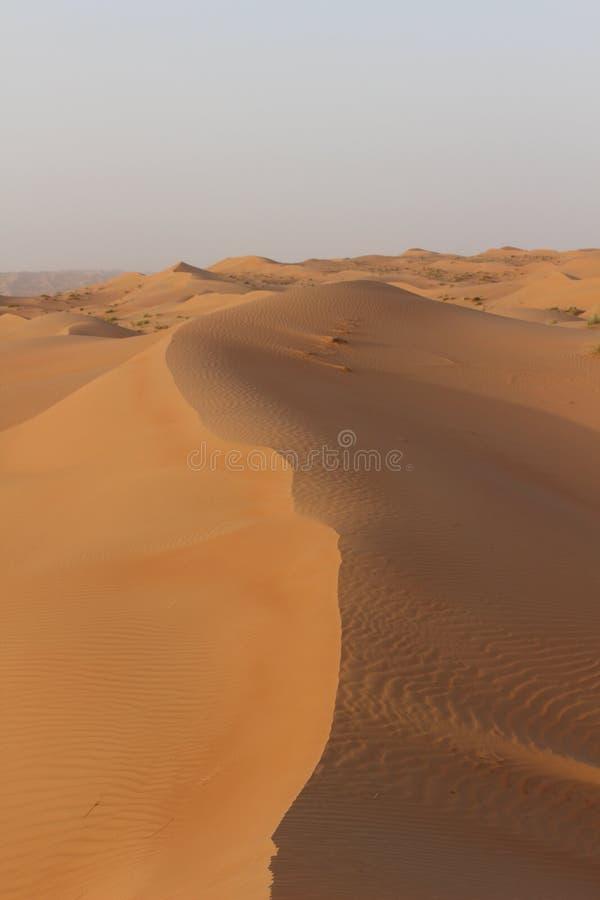 A crista de uma duna em areias de Wahiba em Omã fotos de stock