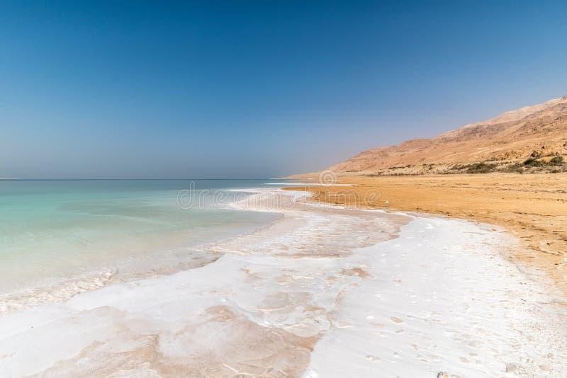 Cristais brancos de sal na costa de Mar Morto, Médio Oriente, Jordânia imagem de stock royalty free