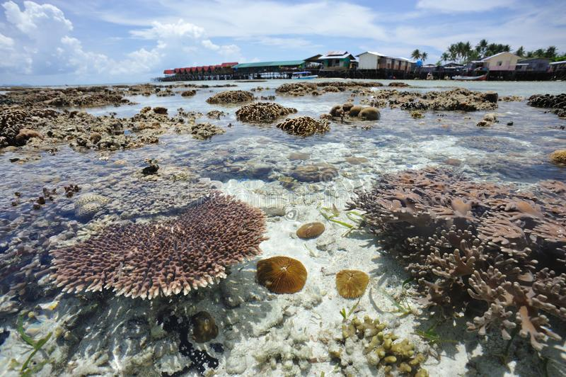 Cristal - água clara na ilha Malaysia de Mabul imagem de stock royalty free