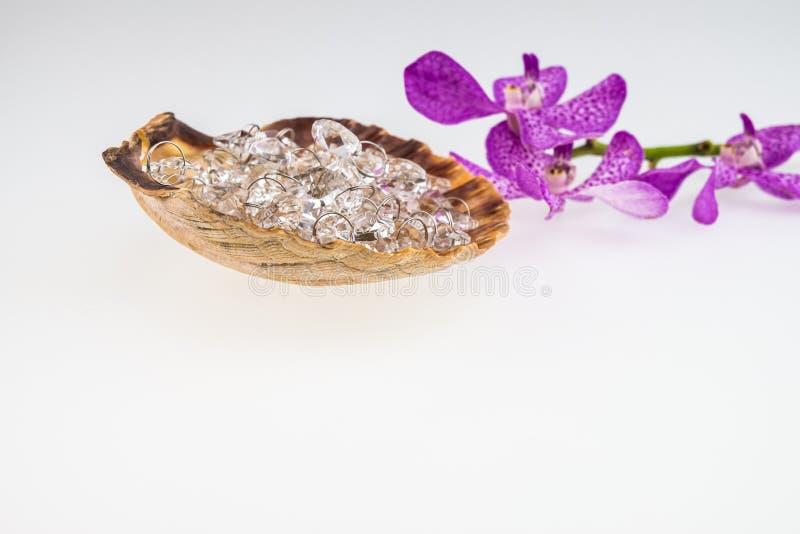 Cristal dans le coquillage avec les orchidées roses de mokara d'isolement sur b blanc images libres de droits