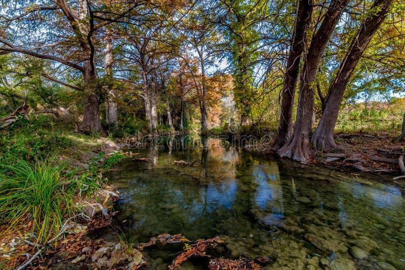 Cristal pitoresco - córrego claro em Texas. imagem de stock royalty free