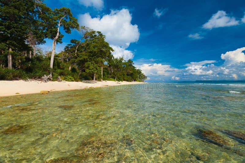 Cristal raso - praia como novo selvagem da água desobstruída fotos de stock royalty free